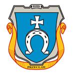 logo arimr